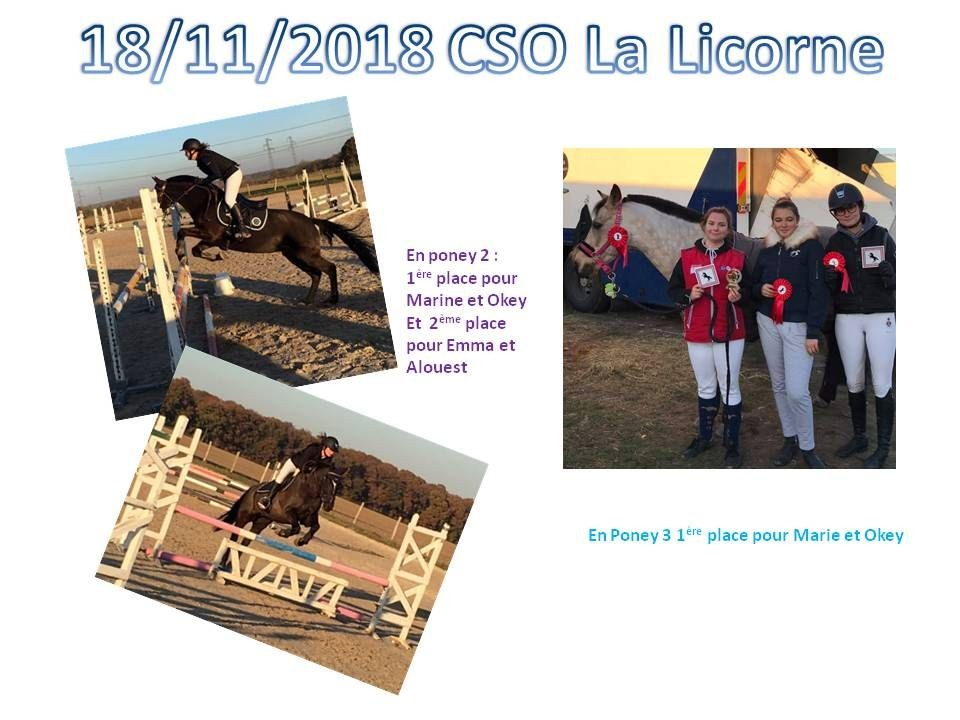 18 - 11 - 2018 CSO La Licorne