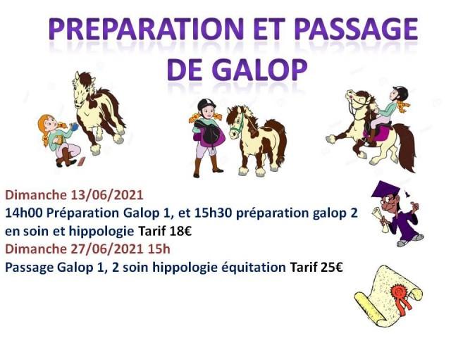 13 - 06- 2021 préparation et passage de galop